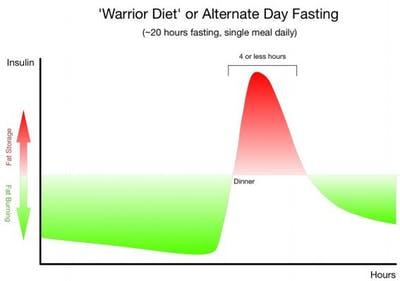 warrior diet insulin chart